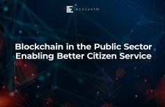 Blockchain in the Public Sector Enabling Better Citizen Service