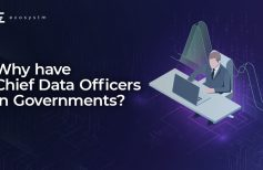 Why have Chief Data Officers in Governments?