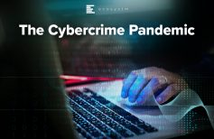 The Cybercrime Pandemic